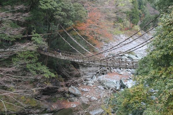 かずら橋、祖谷